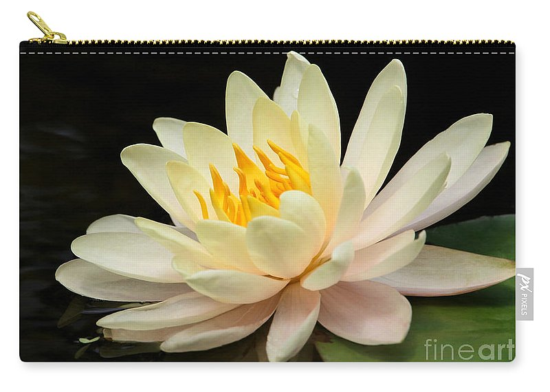 Macro Carry-all Pouch featuring the photograph Sweet Peach Water Lily by Sabrina L Ryan