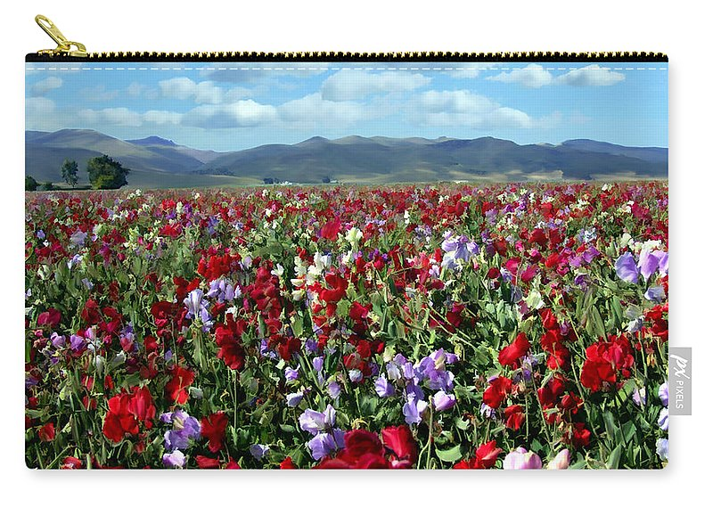 Flowers Carry-all Pouch featuring the photograph Sweet Peas Forever by Kurt Van Wagner