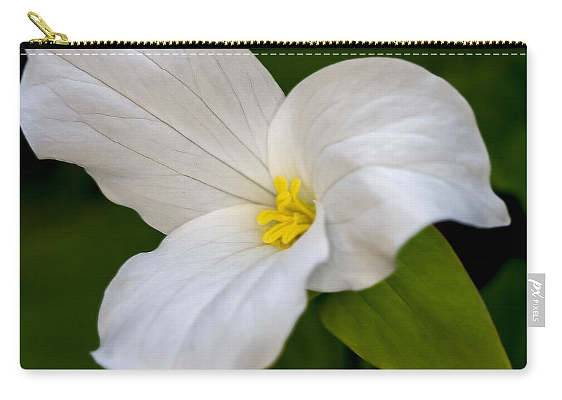 White Carry-all Pouch featuring the photograph Sweet White Trillium 5 by Jack R Perry