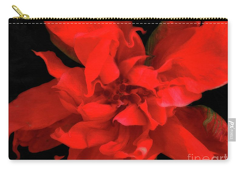 Flower Carry-all Pouch featuring the photograph Sweetheart by Molly McPherson