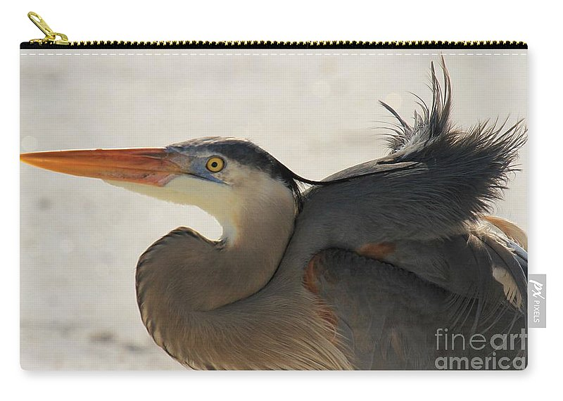 Gulf Islands National Seashore Carry-all Pouch featuring the photograph Swoosh by Adam Jewell