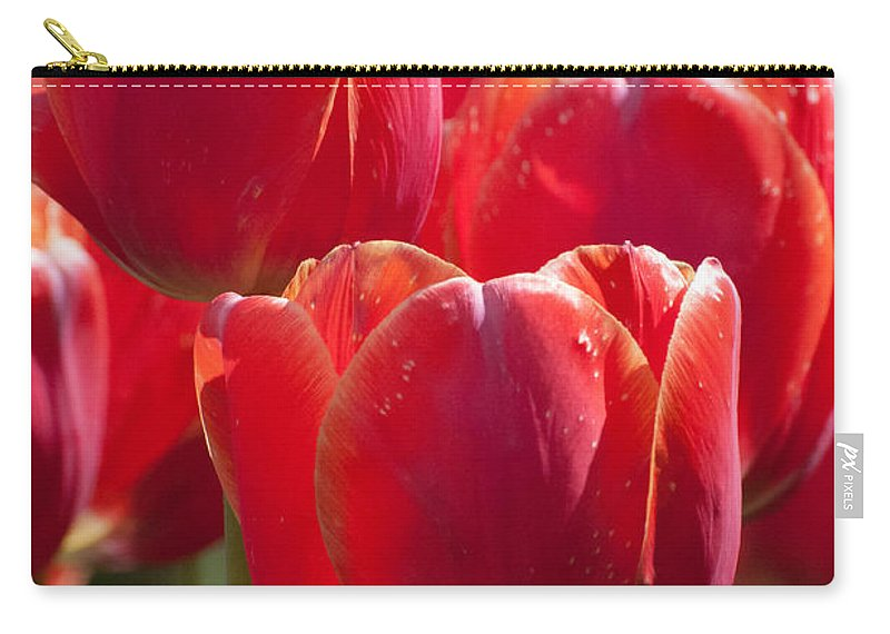Tulip Carry-all Pouch featuring the photograph Symbolic Tulips by Bianca Nadeau