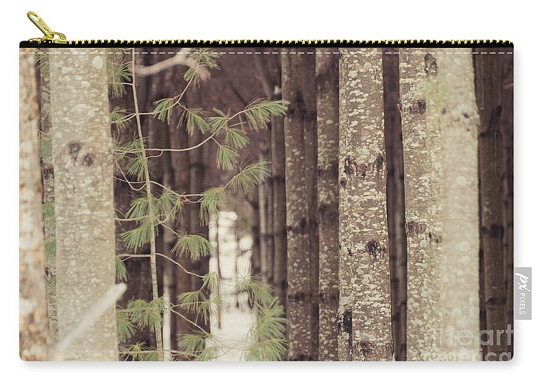 Landscapes Carry-all Pouch featuring the photograph Symmetrical Evergreens by Cheryl Baxter