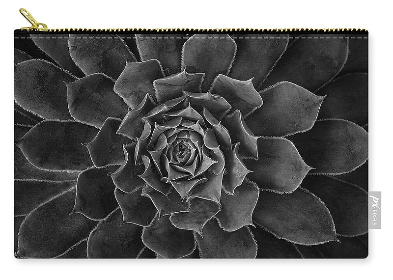 Succulent Carry-all Pouch featuring the photograph Symmetrical Succulent by Robert Woodward