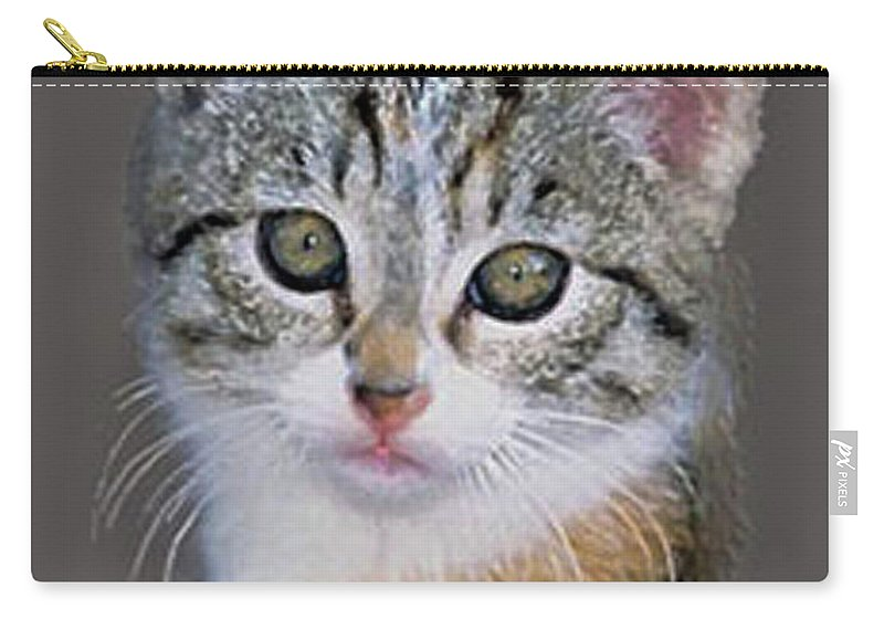 Silver Carry-all Pouch featuring the painting Tabby Kitten An Original Painting For Sale by Bob and Nadine Johnston