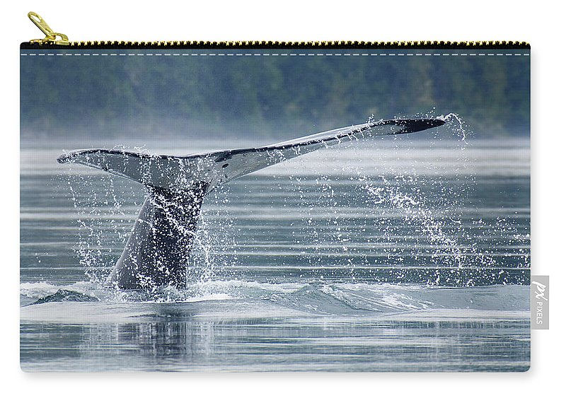 One Animal Carry-all Pouch featuring the photograph Tail Of Humpback Whale by Grant Faint