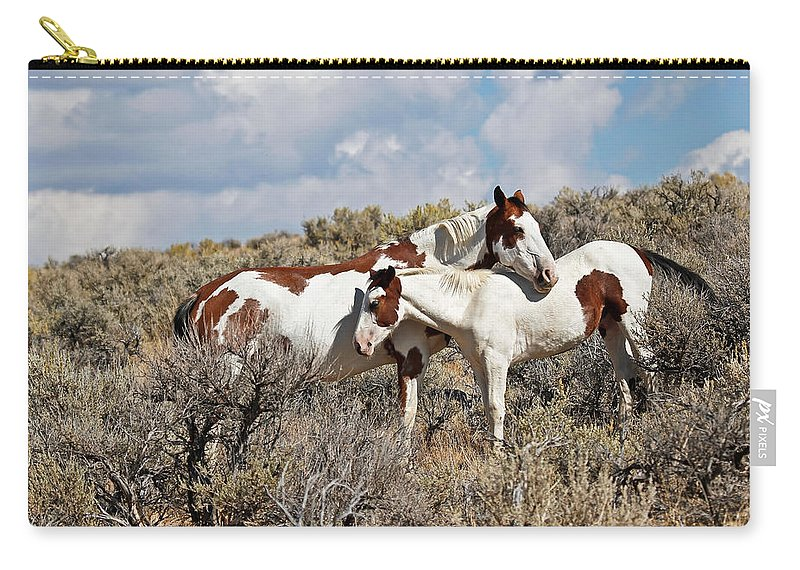 Horses Carry-all Pouch featuring the photograph Take Me As I Am by Athena Mckinzie