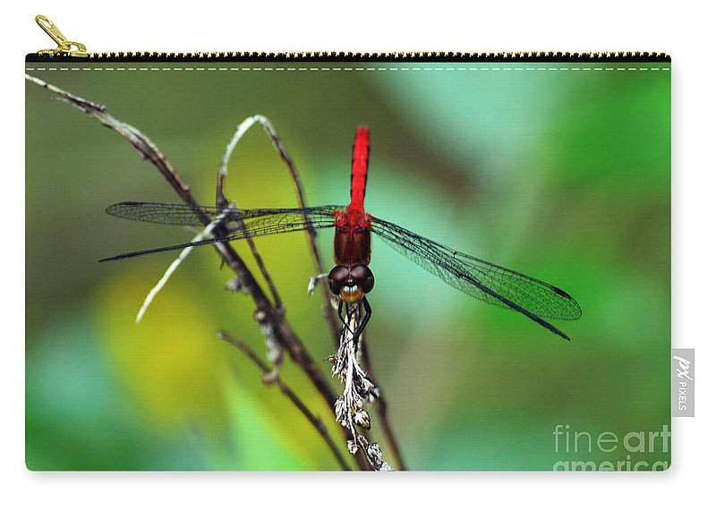 Wings Carry-all Pouch featuring the photograph Taking A Bow by Kevin Fortier