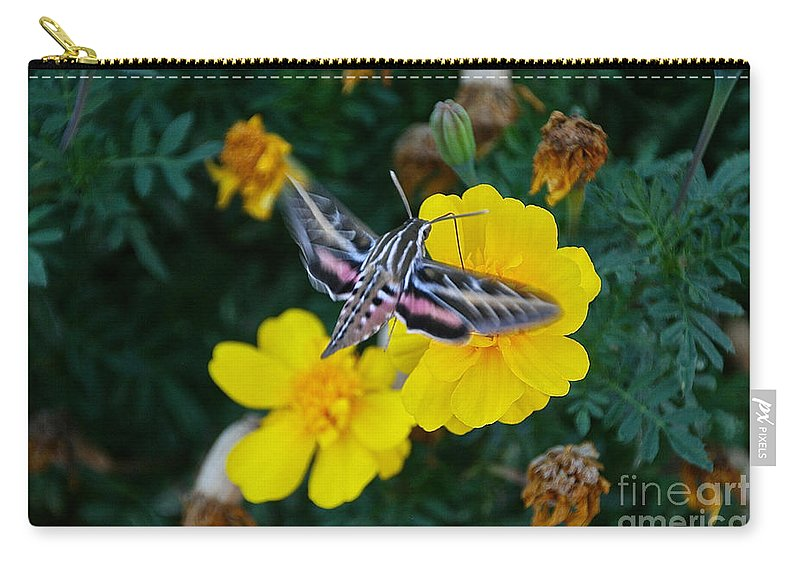 Butterfly Moth Carry-all Pouch featuring the photograph Taking Flight by Susan Herber