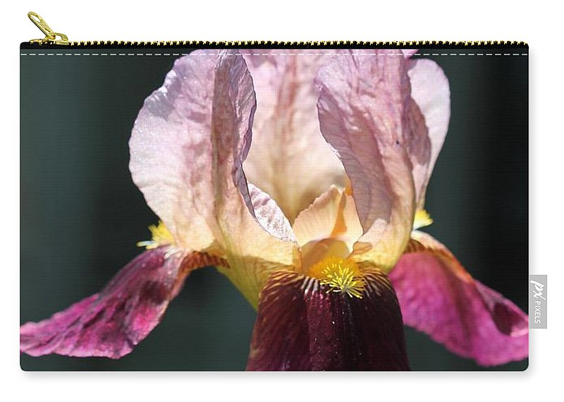 Mccombie Carry-all Pouch featuring the photograph Tall Bearded Iris Named Indian Chief by J McCombie