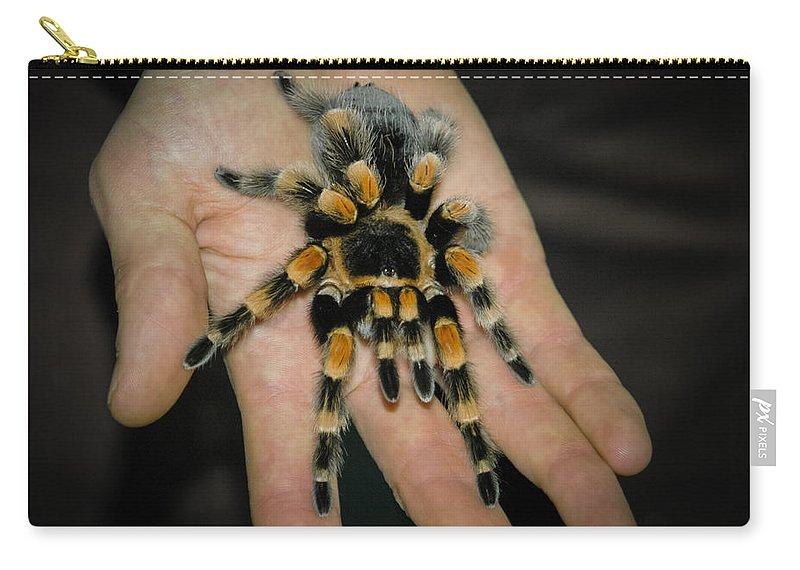 Arachnid Carry-all Pouch featuring the photograph Tarantula by Mark Llewellyn