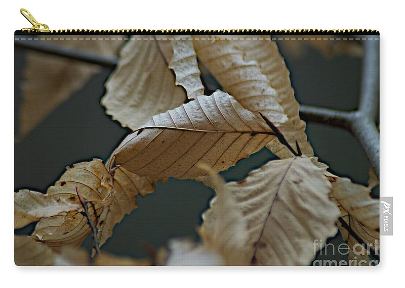 Cayuga Lake Carry-all Pouch featuring the photograph Taughannock Falls by Joseph Yarbrough