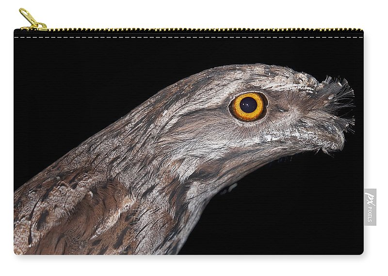 Bird Carry-all Pouch featuring the photograph Tawny Frogmouth by Michelle Wrighton