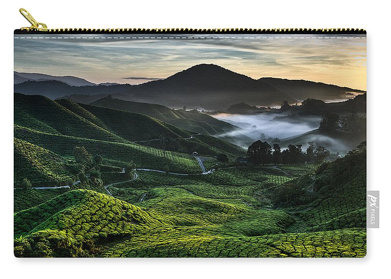 Tea Plantation Carry-all Pouch featuring the photograph Tea Plantation At Dawn by Dave Bowman