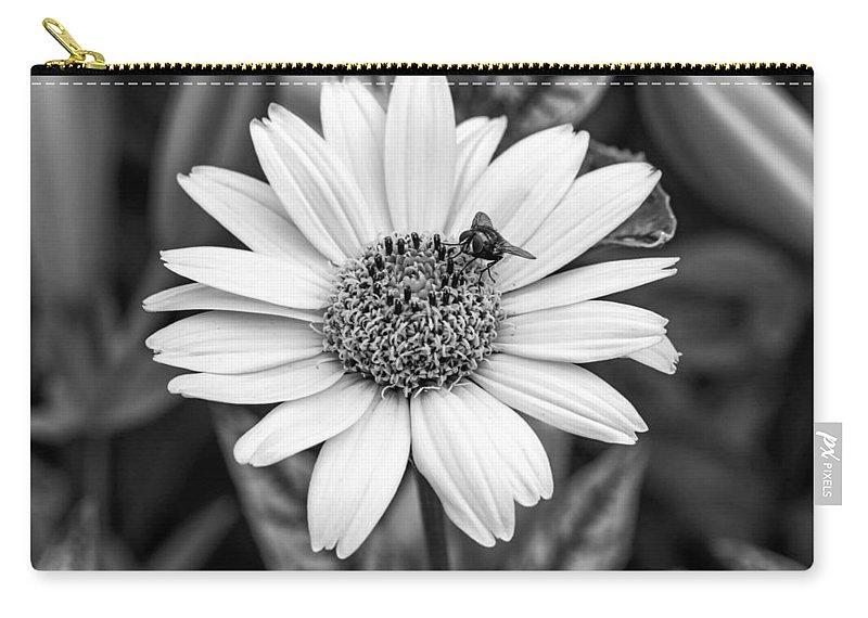 Flower Carry-all Pouch featuring the photograph Teamwork Monochrome by Steve Harrington