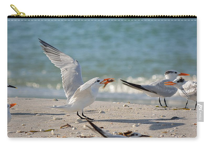 Tern Carry-all Pouch featuring the photograph Terning A Fish Around by Patricia Twardzik