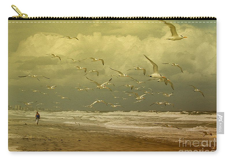 Terns Carry-all Pouch featuring the photograph Terns In The Clouds by Deborah Benoit