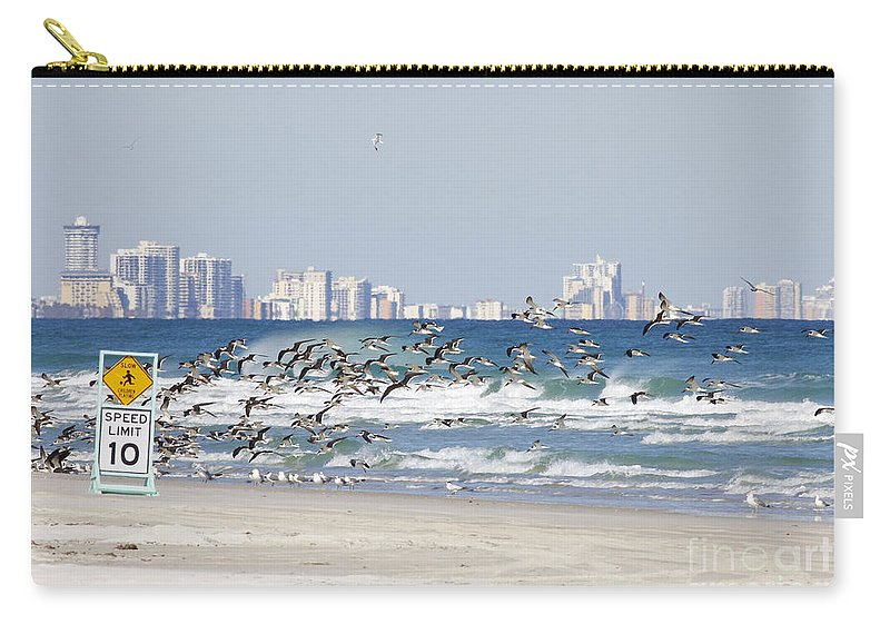 Birds Carry-all Pouch featuring the photograph Terns On The Move by Deborah Benoit