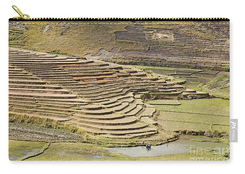 Terrace Carry-all Pouch featuring the photograph Terraces And Paddy Fields by Liz Leyden