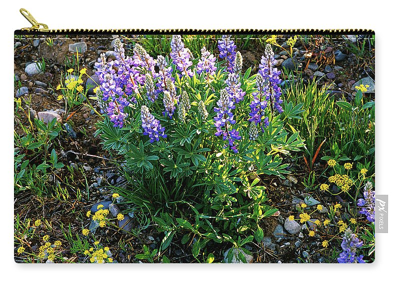 Wyoming Carry-all Pouch featuring the photograph Teton Widflowers by Ed Riche