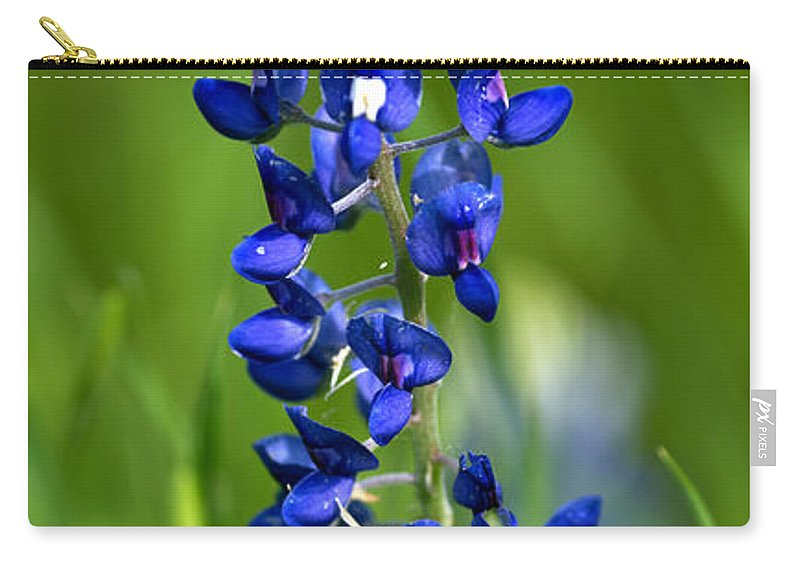 Texas Carry-all Pouch featuring the photograph Texas Bluebonnet by Gary Langley