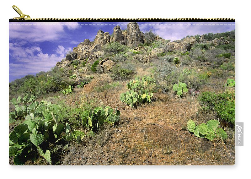 Cacti Carry-all Pouch featuring the photograph Texas Desert by David and Carol Kelly