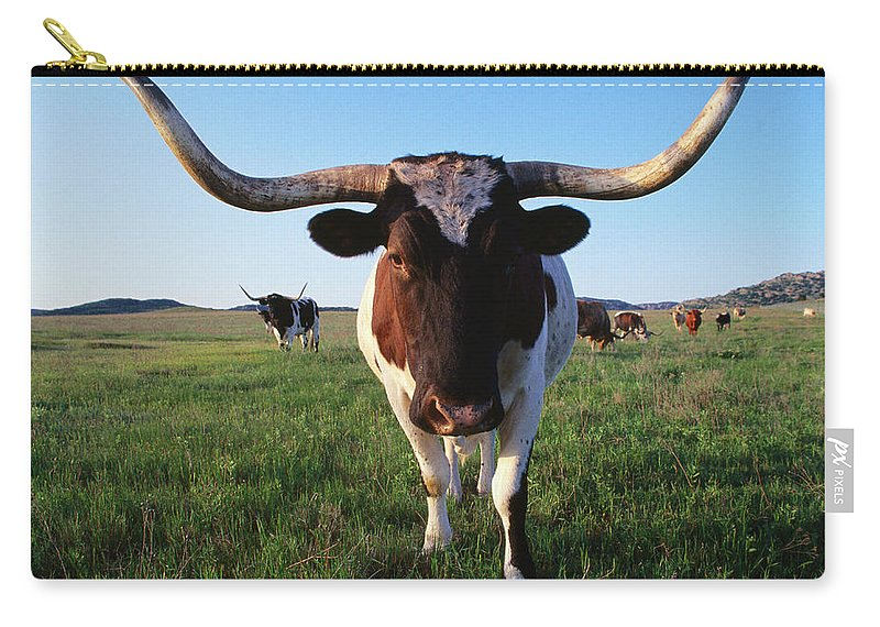 Horned Carry-all Pouch featuring the photograph Texas Longhorn Cattle by John Elk