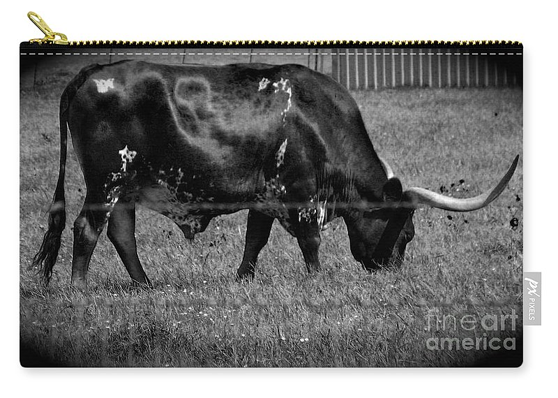 Cattle Carry-all Pouch featuring the photograph Texas Longhorn IIi by Anita Lewis
