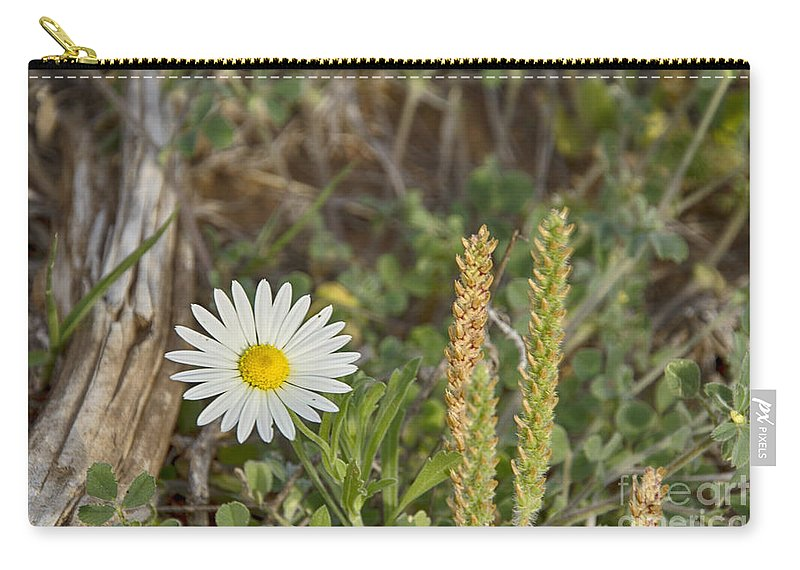 Wildflowers Carry-all Pouch featuring the photograph Texas Wildflowers V5 by Douglas Barnard