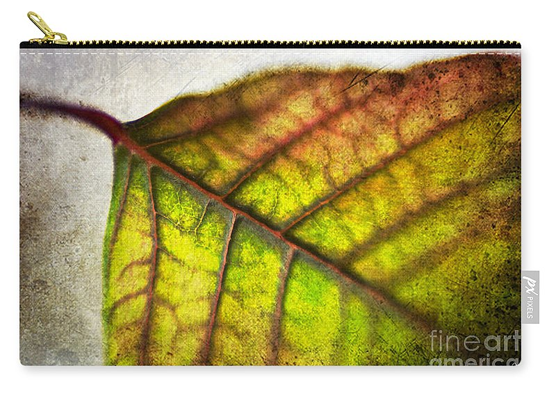 Texture Carry-all Pouch featuring the photograph Textured Leaf Abstract by Scott Pellegrin