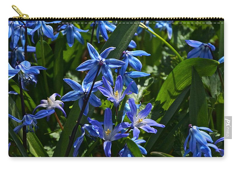 Scilla And Chionodoxa Flowers Carry-all Pouch featuring the photograph Thank You by Byron Varvarigos