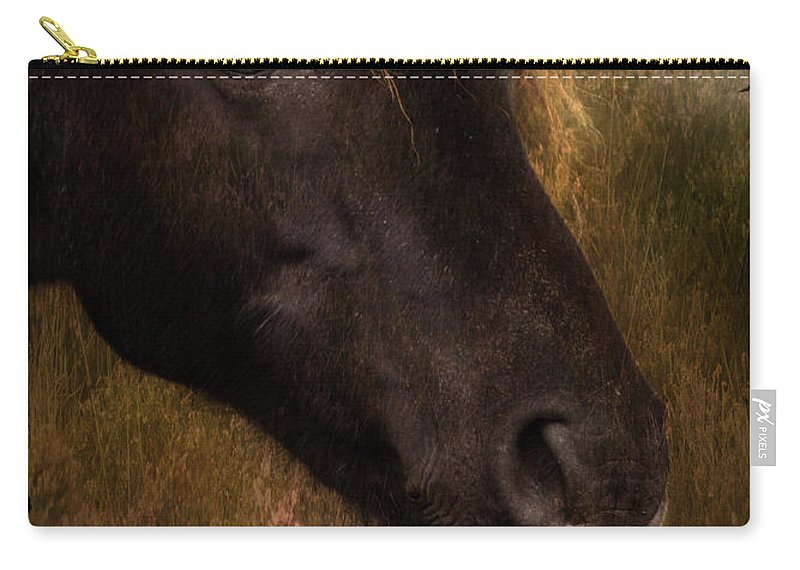 Pony Carry-all Pouch featuring the photograph that Wild Look by Angel Ciesniarska
