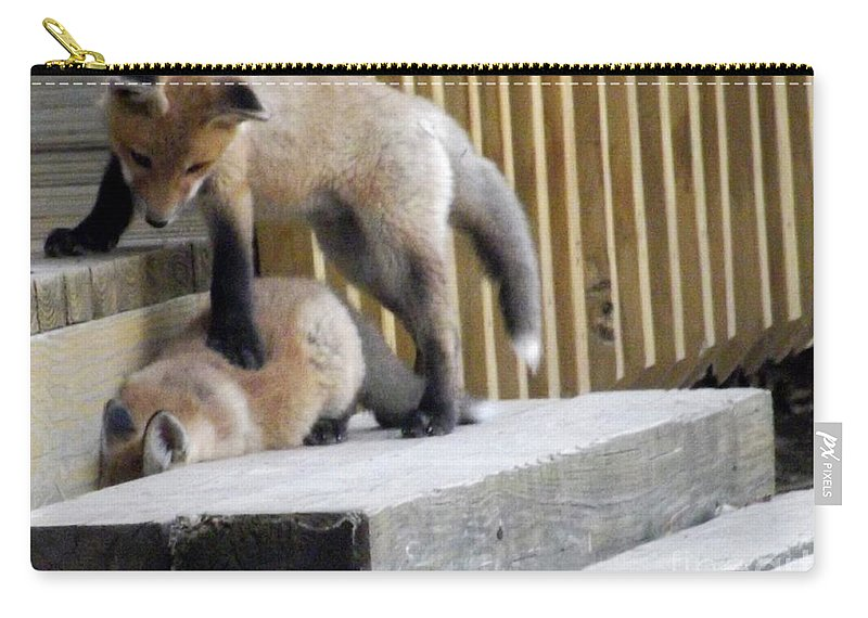 Deb Schense Carry-all Pouch featuring the photograph That's Not Helping - Two Fox Kits by Deb Schense