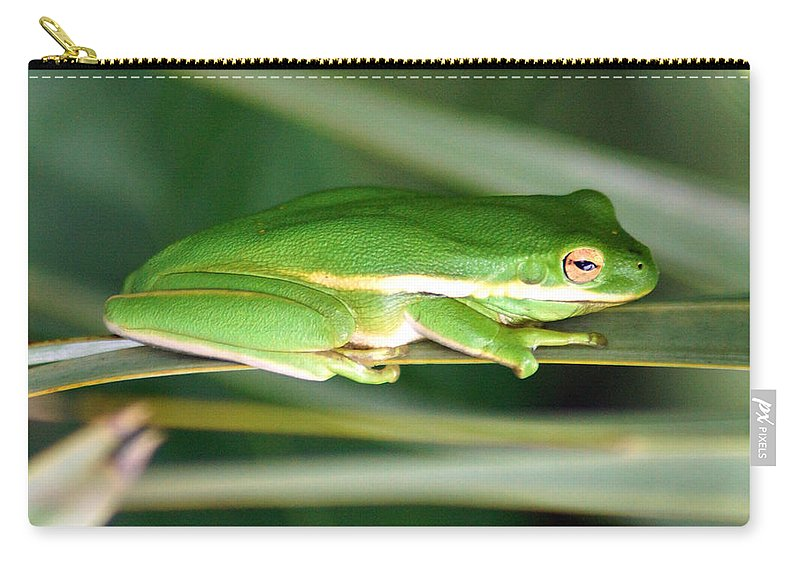 The American Green Tree Frog Carry-all Pouch featuring the photograph The American Green Tree Frog by Kim Pate