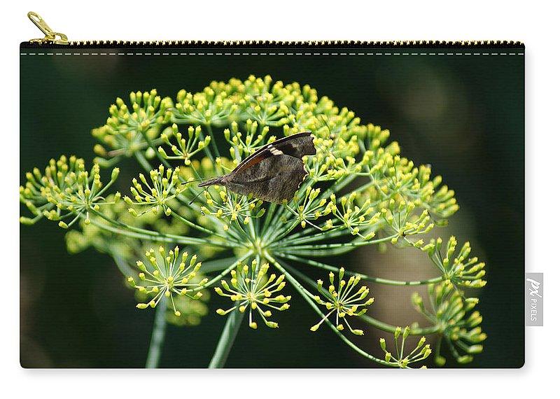 The American Snout Butterfly Carry-all Pouch featuring the photograph The American Snout Butterfly by Kim Pate
