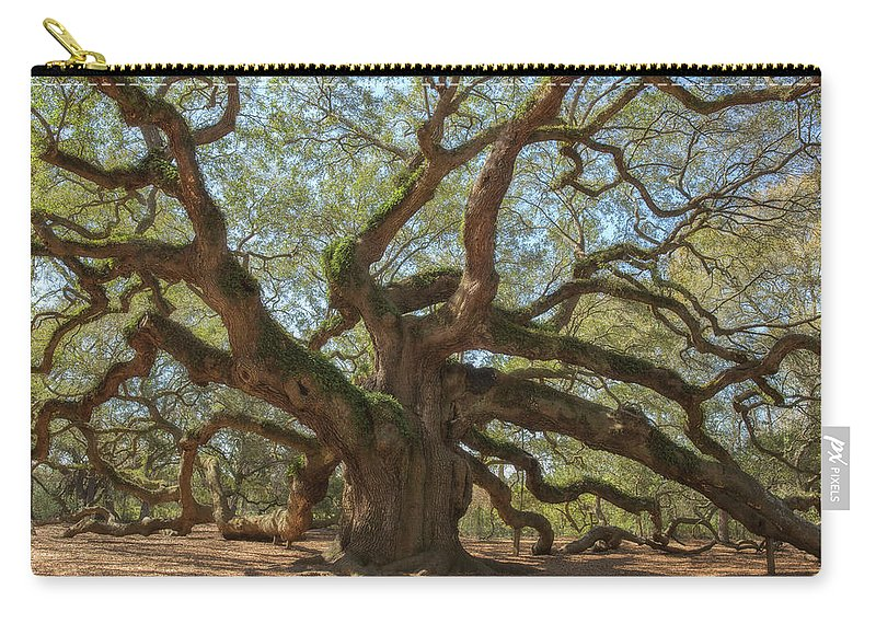 Tranquility Carry-all Pouch featuring the photograph The Angel Oak by Kathleen Clemons