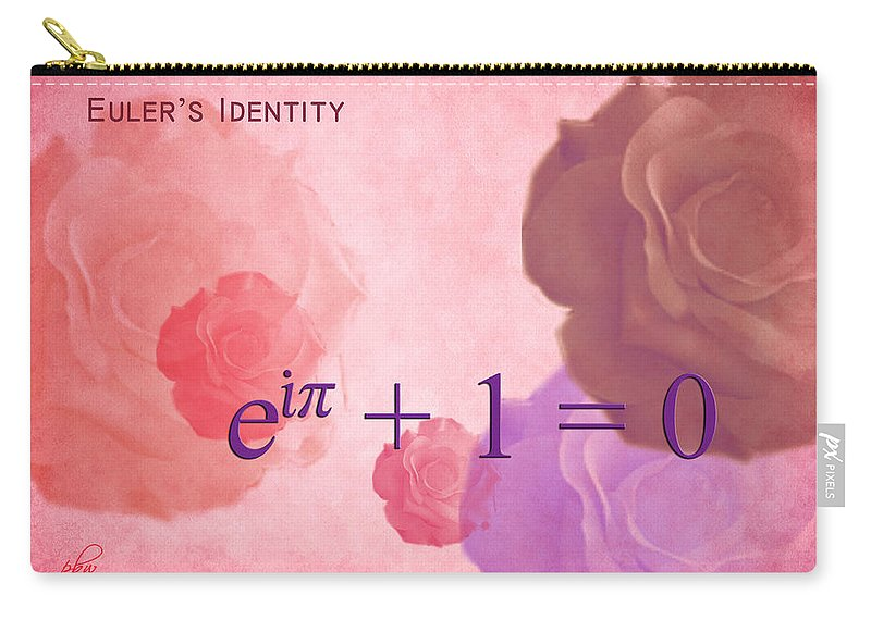 Feature Art Carry-all Pouch featuring the digital art The Beauty Equation by Paulette B Wright