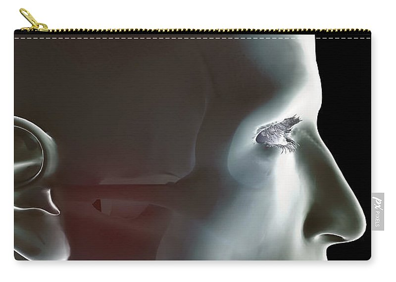 Eye Socket Carry-all Pouch featuring the photograph The Bones Of The Head by Science Picture Co