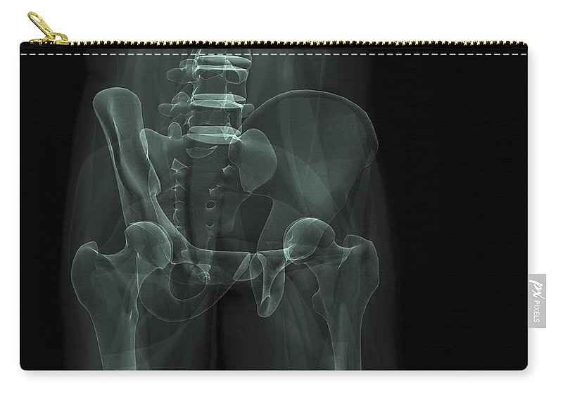 3d Visualisation Carry-all Pouch featuring the photograph The Bones Of The Pelvis by Science Picture Co