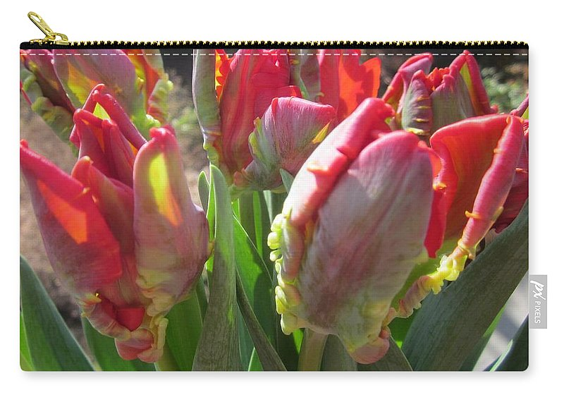 Flowerromance Framed Prints Carry-all Pouch featuring the photograph The Bouquet by Rosita Larsson