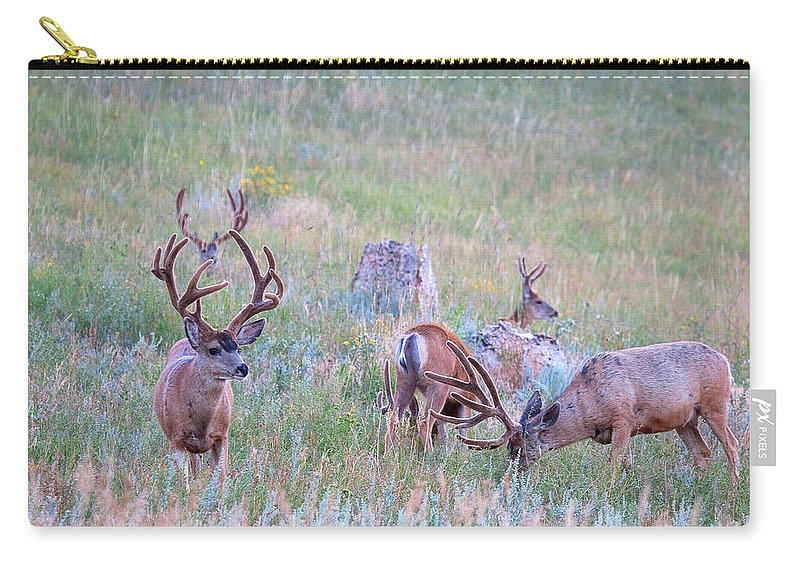 Mule Deer Herd Photograph Carry-all Pouch featuring the photograph The Boys In The Band by Jim Garrison