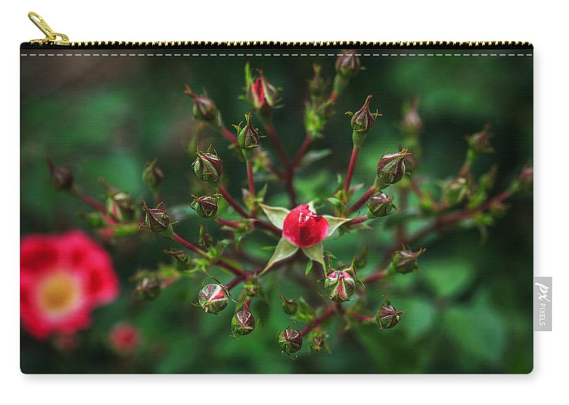 Bumble Bee Carry-all Pouch featuring the photograph The Bud's For You by Sennie Pierson