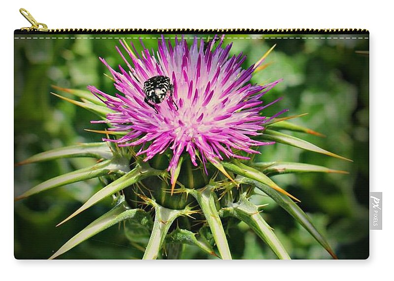Thistle Carry-all Pouch featuring the photograph The Bug And The Thistle by Clare Bevan