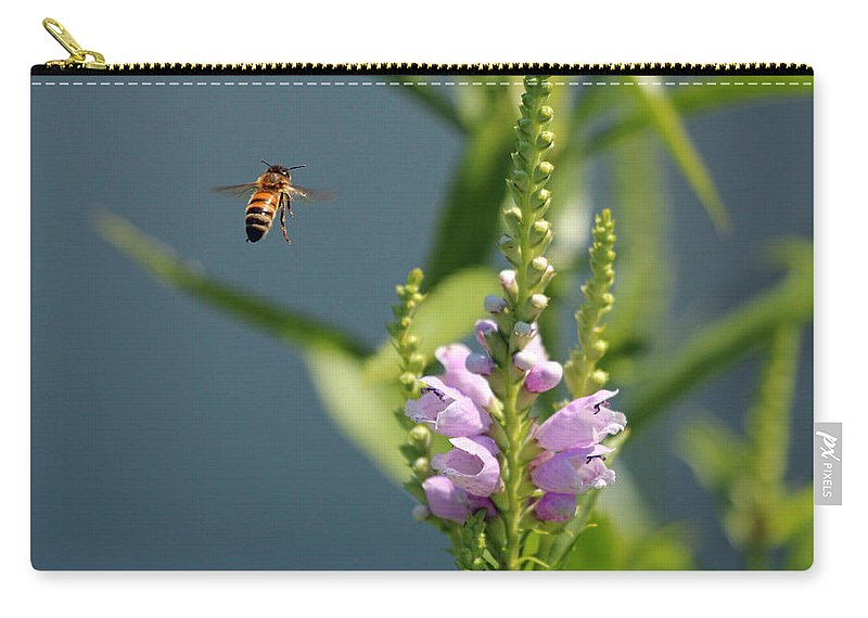 Bee Carry-all Pouch featuring the photograph The Buzz by Jackson Pearson