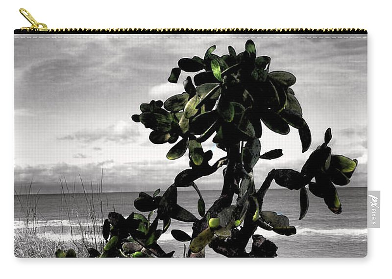 Tree Carry-all Pouch featuring the photograph The Catus Tree Siesta Key Florida by Tom Prendergast