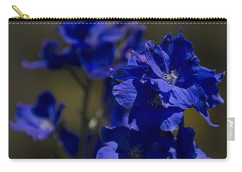 Carry-all Pouch featuring the photograph The Color Blue V6 by Douglas Barnard