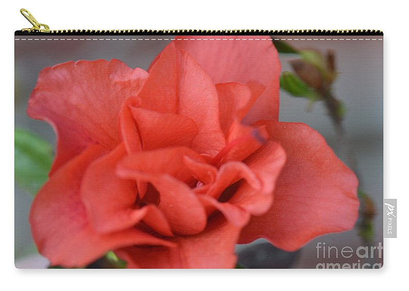 Honey Carry-all Pouch featuring the photograph The Coral Carnival Photo C by Barb Dalton