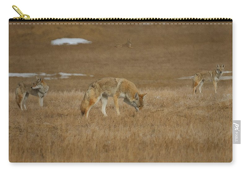 The Coyote Carry-all Pouch featuring the digital art The Coyotes Painterly by Ernie Echols