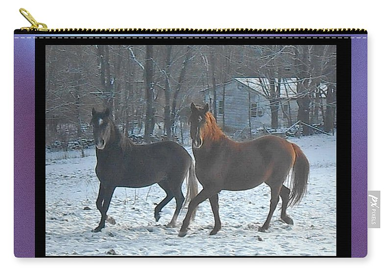 Horses Carry-all Pouch featuring the photograph The Dancing Paso Fino Stallions by Patricia Keller