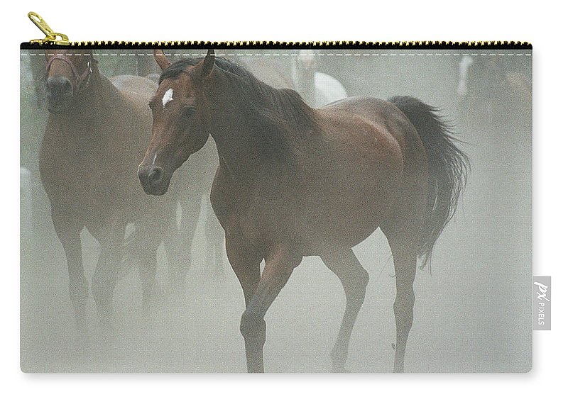 Arabian Horse Carry-all Pouch featuring the photograph The Daughters Of A Desert by Angel Ciesniarska